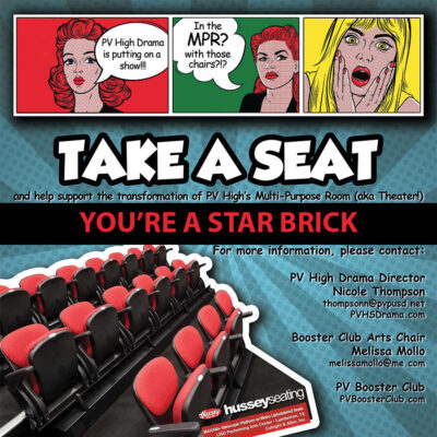 Donation: Take a Seat for PVHS Drama - You're a Star Brick